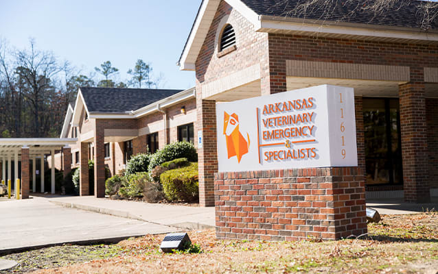 About our Animal Hospital in Little Rock