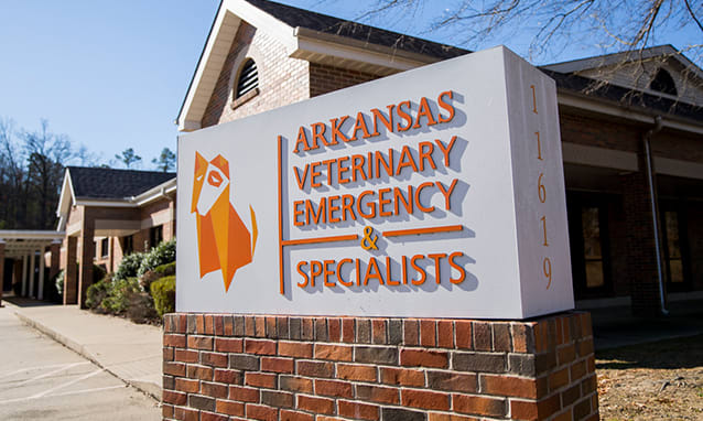 Arkansas Veterinary Emergency & Specialists | Little Rock